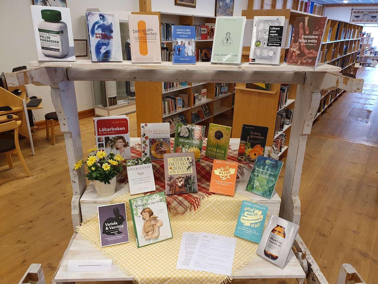 Vävstolen på Sorsele bibliotek med böcker om sjukdomar och hälsovård