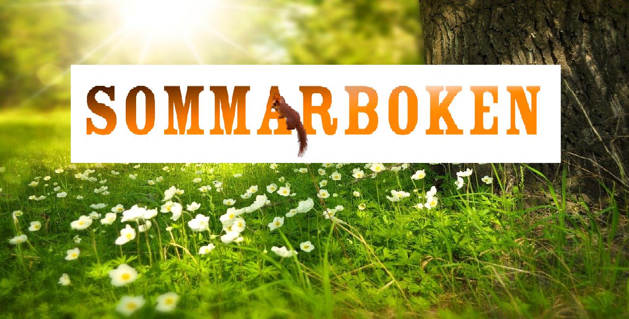 Bild på Sommarbokens logga
